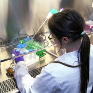 De nouveaux fonds pour la recherche appliquée à La Cité collégiale