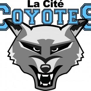 Les Coyotes jouent pour une bonne cause