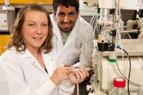 Subvention de plus d'un quart de million pour les infrastructures de recherche à La Cité collégiale