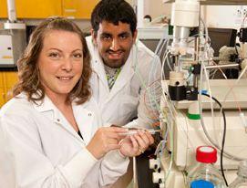 Une technologue du centre de recherche appliquée en biovalorisation démontre les techniques de laboratoire à un étudiant en stage Coop, sur l'instrument FPLC qui permet de purifier des protéines,