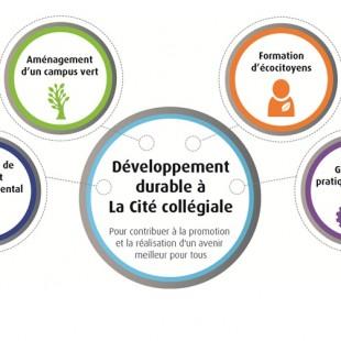 Nouveau plan stratégique pour le développement durable à La Cité collégiale