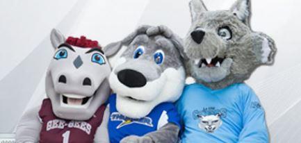 trois établissements d'enseignement postsecondaire – le Collège Algonquin, La Cité collégiale et le Service de santé de l'Université d'Ottawa