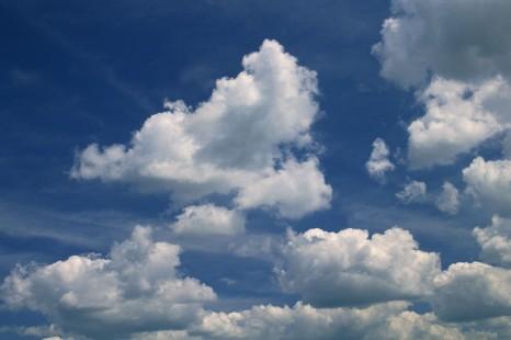 La biotechnologie végétale réduit les émissions de gaz à effet de serre