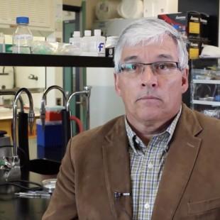 Rémy Aubin – professeur au Baccalauréat en biotechnologie à La Cité