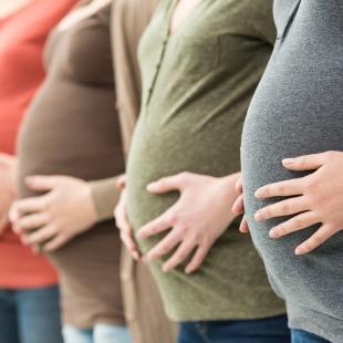 Recherche appliquée : La Cité lance un appel aux femmes enceintes