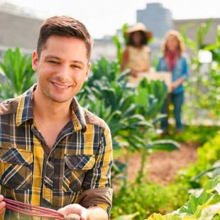 Appui financier pour la relève agricole franco-ontarienne