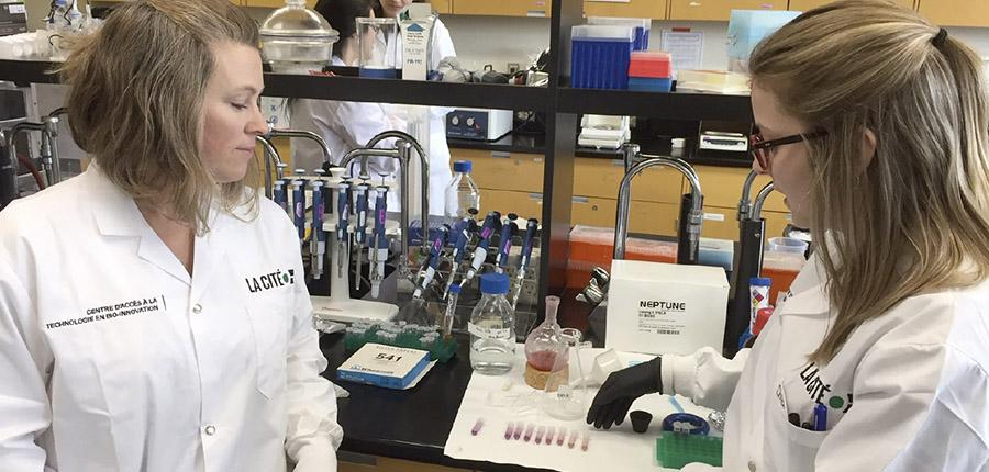 Développer une méthode écocertifiée d'extraction des antioxydants